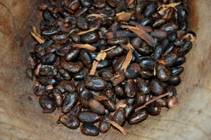Roasted Cocoa Beans from Chris Duggleby's article 'Potential Carcinogens Found in Advent Calender Chocolates'